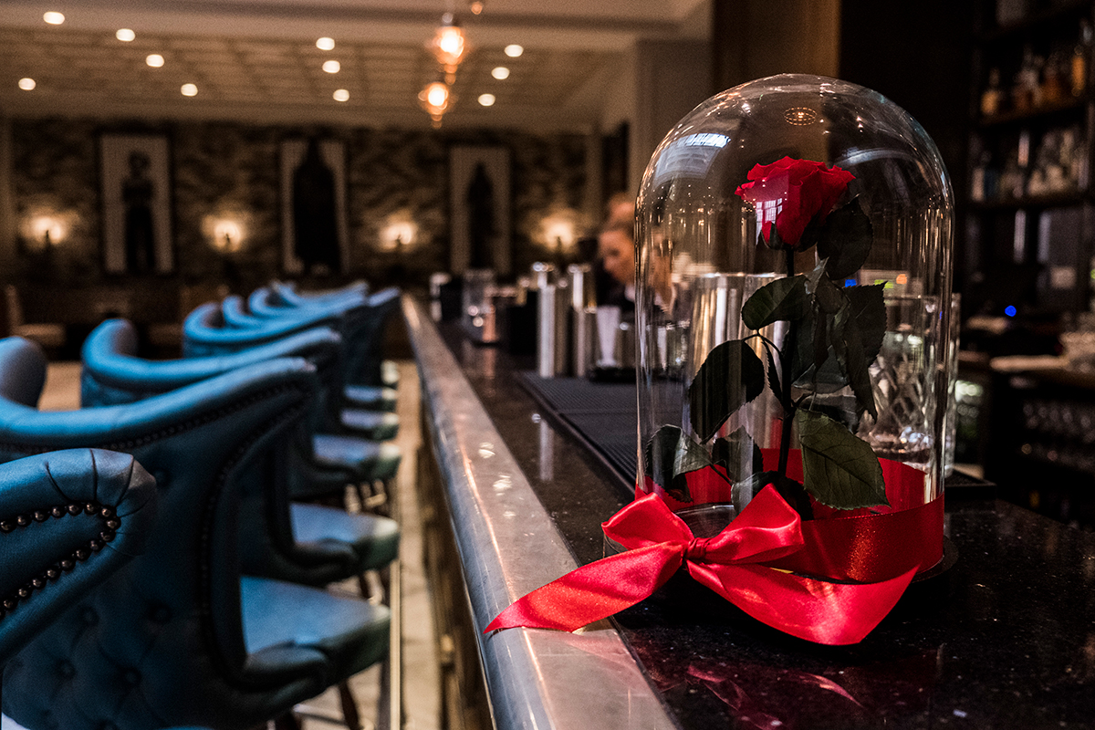single red rose in dome glass box on a bar counter